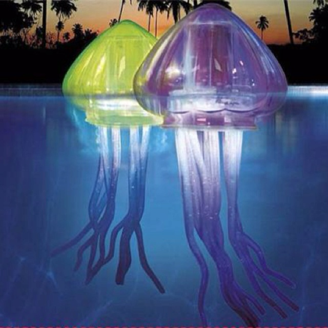 If I had a pool, I would NEED these