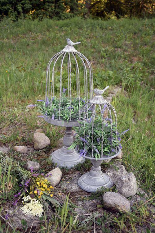 Birdcage flower styling outdoor vintage garden www.thewonderwood.com www.facebook.com/thewonderwoodstore