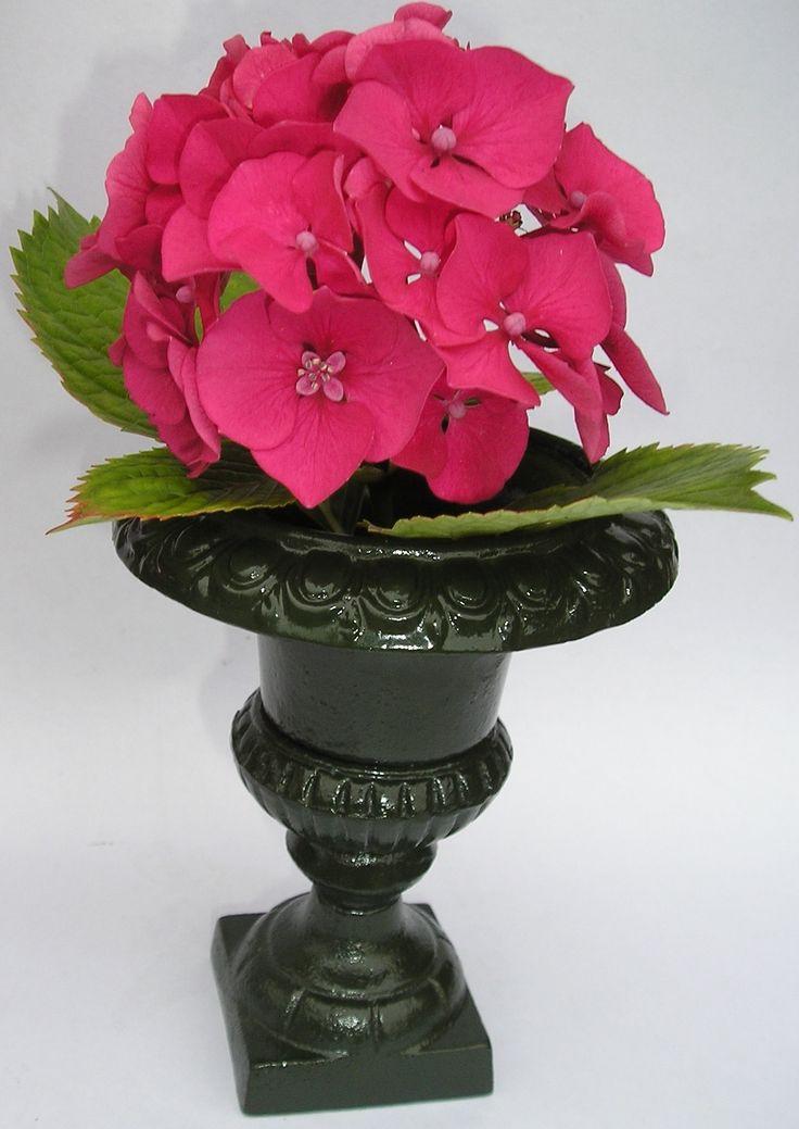 les 25 meilleures id es de la cat gorie vase medicis sur pinterest arrangements de fleurs d. Black Bedroom Furniture Sets. Home Design Ideas
