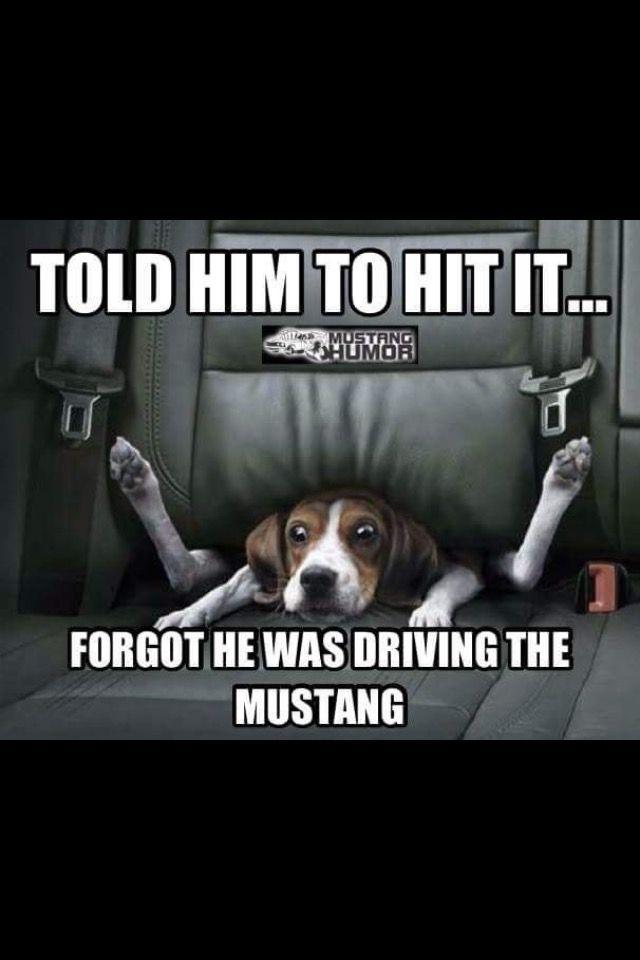 Fox Body Mustang Wide Body Meme