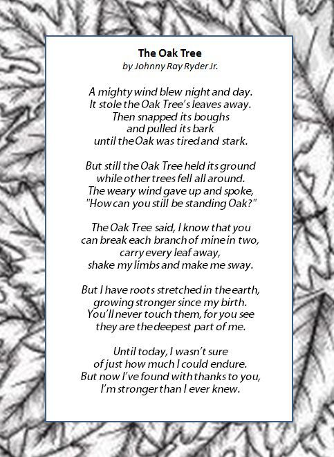 The Oak Tree - I was given a card with this poem this week. It reminded me that I may bend, but I will not break. I am strong like my mama raised me to be.