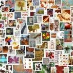 lavoretti per l'autunno: 110 e più progetti creativi da realizzare coi bambini