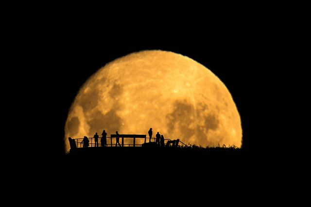 """Moon Silhouettes"" by Mark Gee. Winner of the ""People in Space"" category. In order to get the Moon looking so large compared to the people, Gee took this picture from over 2 km away. The golden color is typical of a Moon low on the horizon. Mona Evans, ""Astronomy Photographer of the Year 2013"" http://www.bellaonline.com/articles/art181754.asp"