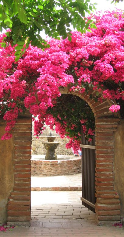 Courtyard view through the bougainvillea covered archway at Mission San Juan Capistrano in southern Orange County, California • photo: Non Paratus on Flickr