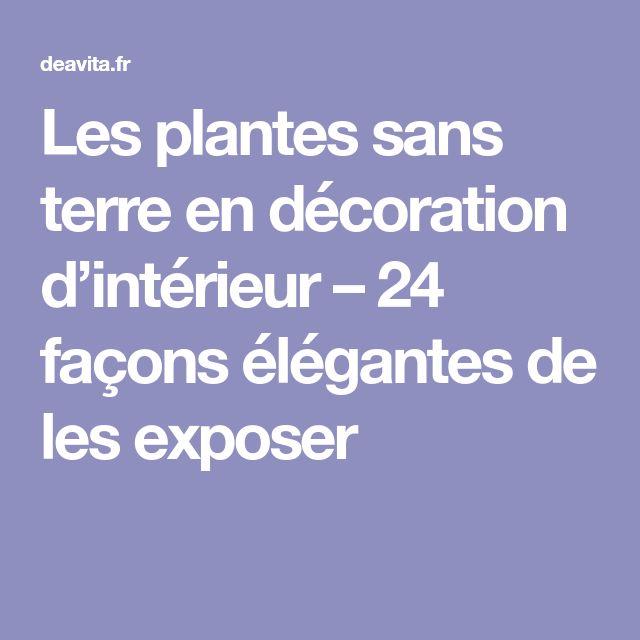 Les plantes sans terre en décoration d'intérieur – 24 façons élégantes de les exposer