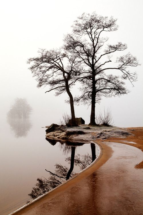 Silence by  Anne Ståhl on 500px.com