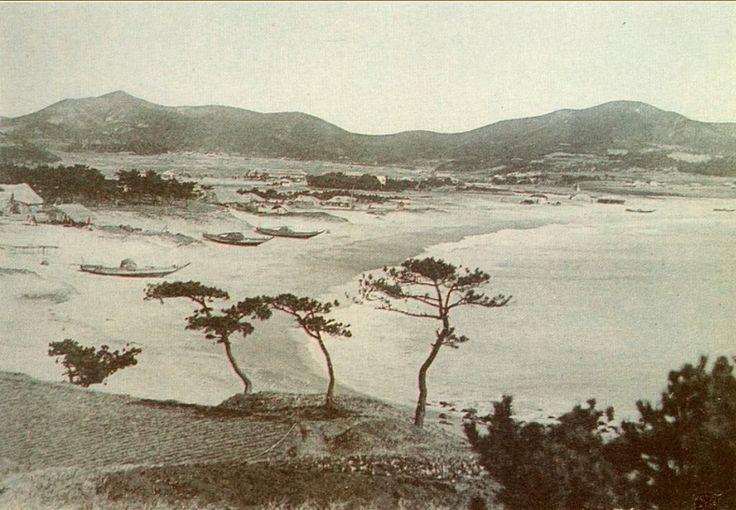 1904년 해운대