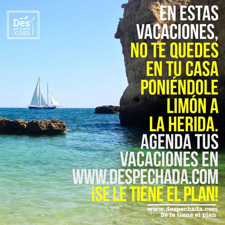 Si aún no tienes planes para estas vacaciones ingresa a www.despechada.com #seletieneelplan tenemos diferentes planes para que distraigas la tusa y no te  quedes en casa.