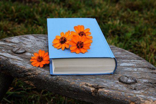Hoy toca escribir sobre un proyecto estadounidense, el Proyecto Libro Azul (Blue Book), donde se recopilo y explicó toda la información...