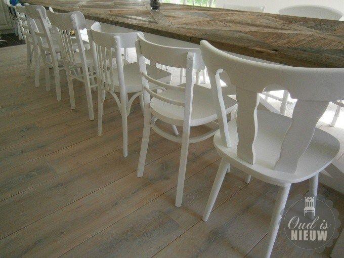 Tijdloze cafe stoelen in elke gewenste ral kleur. Keuze uit vele modellen - Biddinghuizen