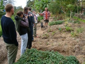 Introduction to Permaculture, Permaculture Design Certificate courses and Internships at the Permaculture Research Institute Sunshine Coast (permaculturesunshinecoast.org)