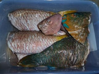 Guam Firehouse Cook: Baked Reef Fish the Island Way