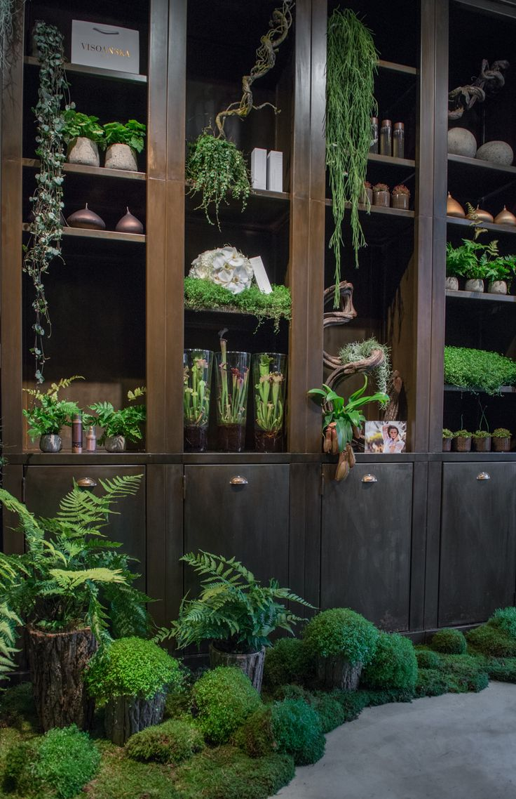 i know its not that practical to plant your herbs inside these cupboards, but still its just another side of creativity that adds beauty.