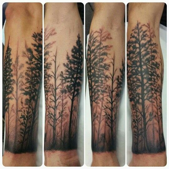 my forearm forest tattoo tree tats pinterest b ume. Black Bedroom Furniture Sets. Home Design Ideas