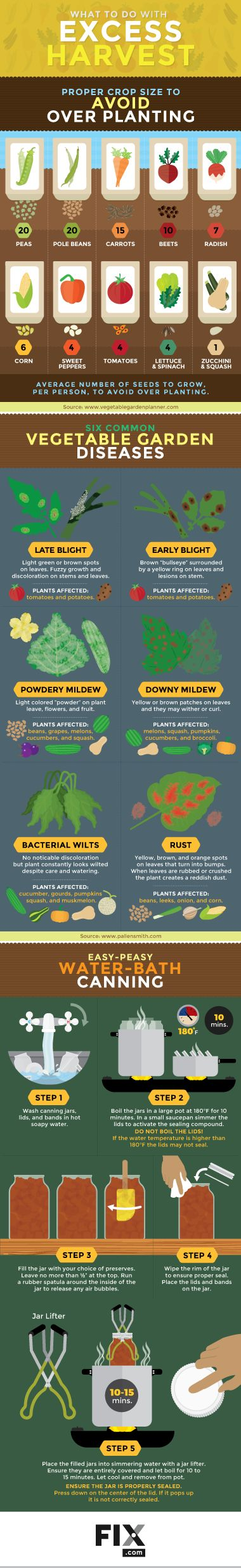 You've worked too hard to let good vegetables go to waste. Here's how to make the most of the extra produce from your garden at the end of the season.
