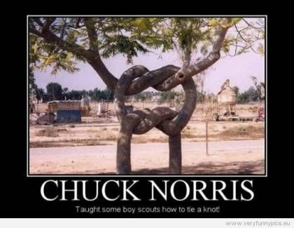 Chuck Norris Jokes | The 50 Best Chuck Norris Facts & Memes (Page 8)