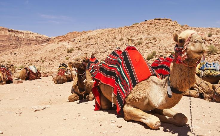 Viajes travel pinterest viajes desiertos y el desierto for Piscina jose garces