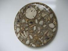 VTG 1970 Lucite Abalone Shell Starfish & Sand Dollar Trivet Coaster~Ocean Decor!