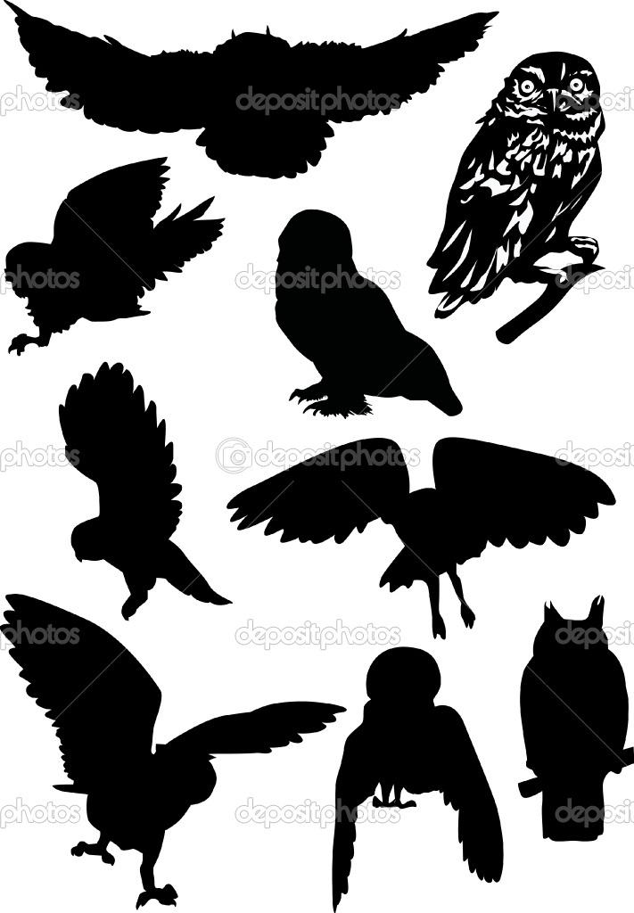 nine owl silhouettes by Dr.PAS - Imagens vectoriais em stock