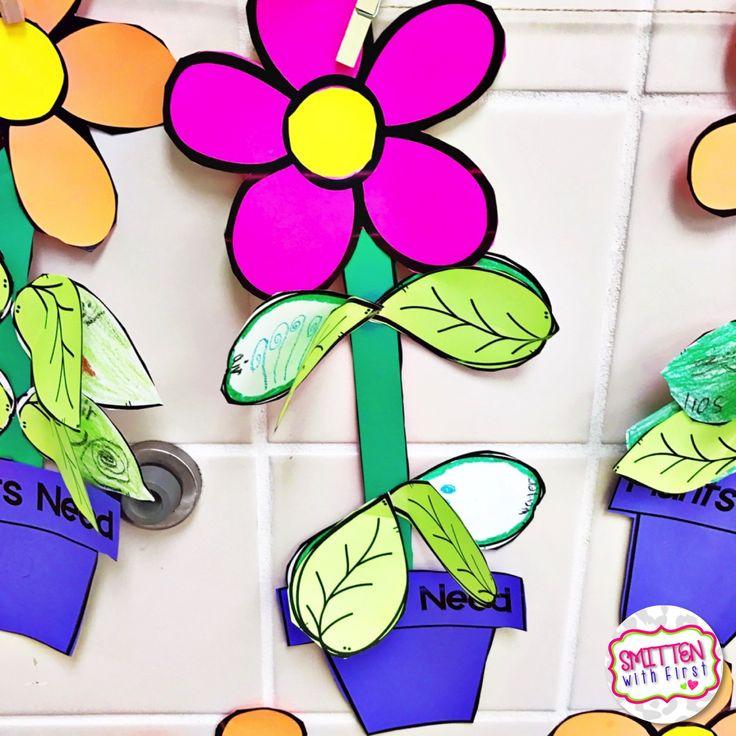 24 besten Plant unit Bilder auf Pinterest | Unterrichtsmaterialien ...