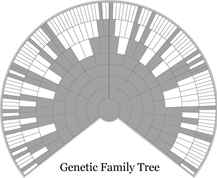 Genetic Genealogist - Everyone Has Two Trees - A Genealogical Tree and a Genetic Tree