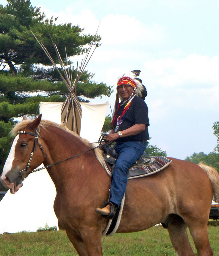 Warriors Of The Rainbow Lodge: 1000+ Images About Holiness Arvol Looking Horse On