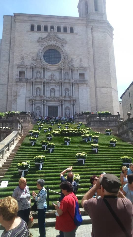 Escalas de la Catedral en Temps de Flors a Girona, maig del 2015