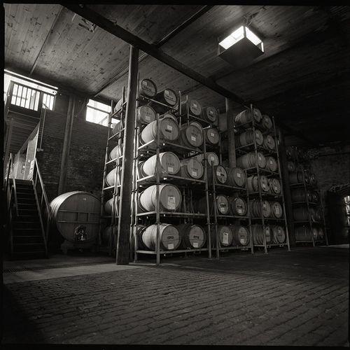 Barrel Room, Wirra Wirra Winery