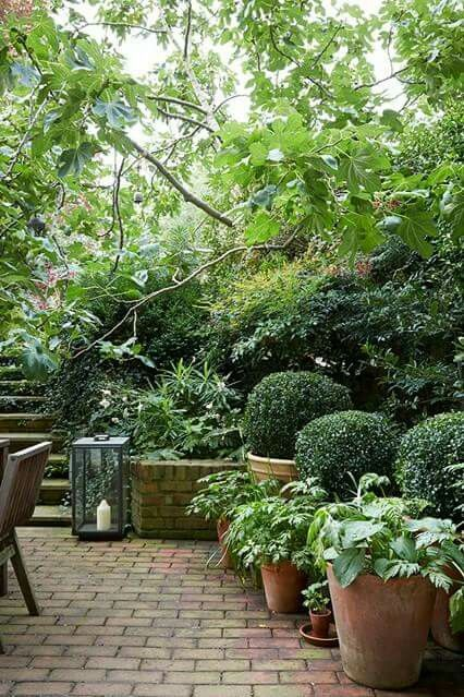 Idyllic perfect green and pavers garden shady space- i love this!