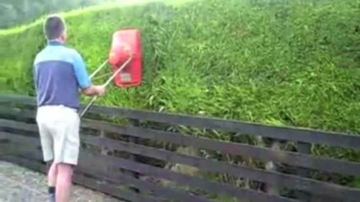 The best way to mow your lawn, I mean hedges...