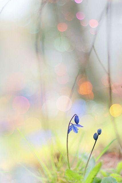 pass it around by dan [durango99], via Flickr