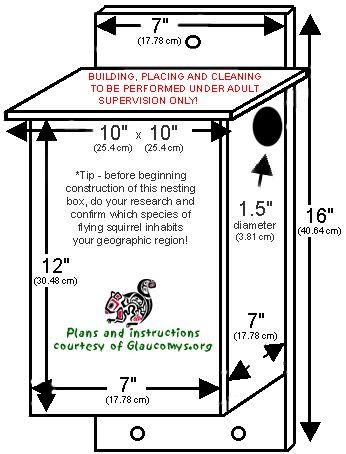 48 best squirrel playground images on pinterest | squirrel feeder