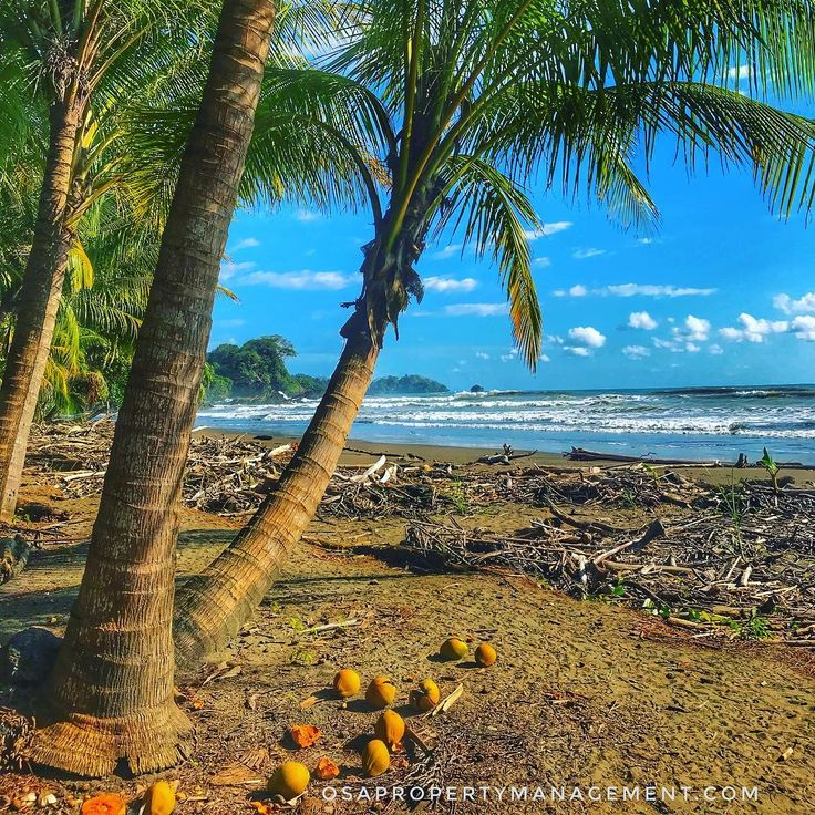 A perfect day to #enjoy the #beach in #CostaRica #picoftheday #vacation #playa #bluesky #beachlife #sand