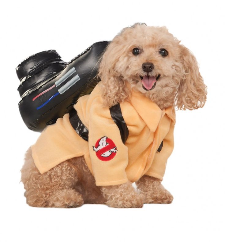 Your pooch may have all the gear and no idea with this awesome #Ghostbusters fancy dress costume, but they sure will look super cute! xoxo #pet #dog #puppy #retro #80s