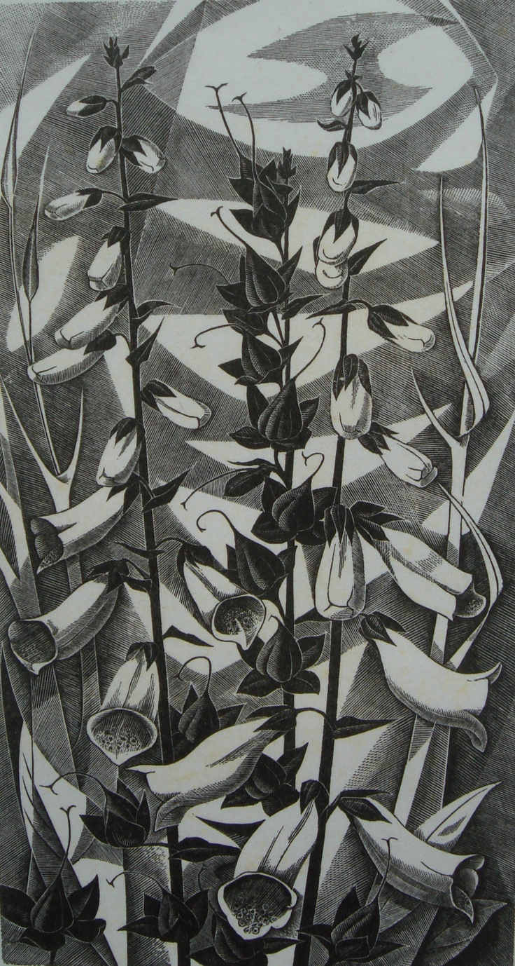 "Monica Poole (1921-2003) ""Foxgloves"" wood engraving. Signed, titled and numbered 89/175. 200 X 108 mm."