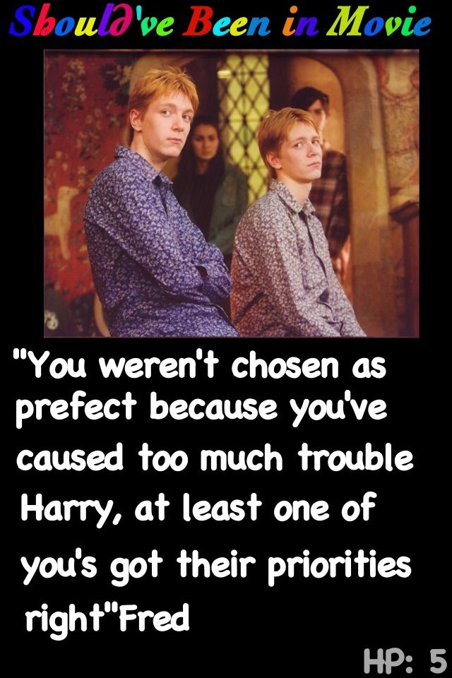 Harry Potter and the Order of the Phoenix Should've Been in Movie Fred and George funny Ron prefect Harry Hermione