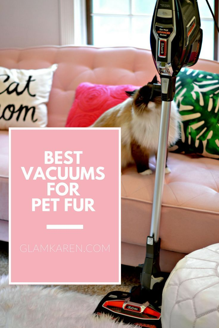 best product, hair, home, cleanses, pet vacuum, pet, dogs, cats, carpets, floors, cleaning, house, cleaning, puppys, pet cleaning products, pet vacuum products, best pet vacuum, best vacuum, best vacuum pet,  pet cleaning, how to get rid, pet vacuum that works, odor eliminator, litter box cleaning, pick up pet hair, pet vacuum 2017, pet vacuum best,
