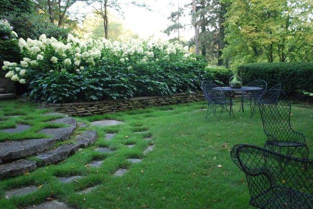 hydrangea borderjpg Landscape Design Pinterest