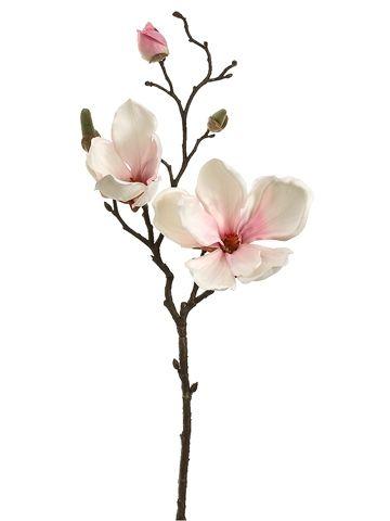 Blush Pink Magnolia Spray 335.JPG