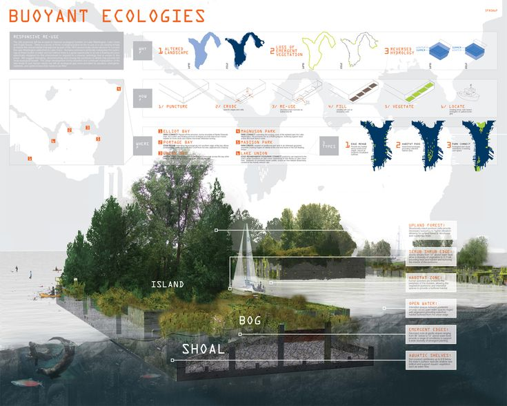 Floating Ecologies provides an opportunity for emergent wetland edges on salvaged concrete pontoons creating new ecological function which was previously lost to development.