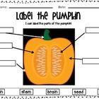 pumpkin plant label the pumpkin vine diagram using the. Black Bedroom Furniture Sets. Home Design Ideas