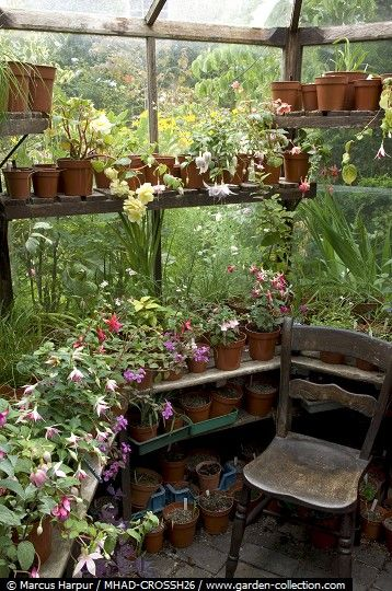 Greenhouse - sacred space - image by Marcus Harpur