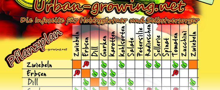 Der ultimative Pflanzkalender! Für alle Hobby-Gärtner, Guerilla-Farmer und Selbstversorger. Der urban-growing Pflanzkalender zeigt was, wann, wo und wie ...