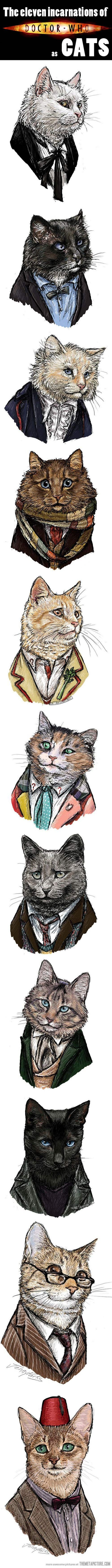 All the incarnations of Doctor Who as cats...which I think is as awesome as it is random. LOL!