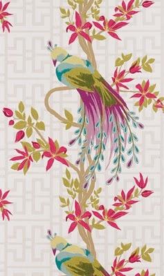 Nina campbell paradiso decoration wallpaper - Nina campbell paradiso wallpaper ...