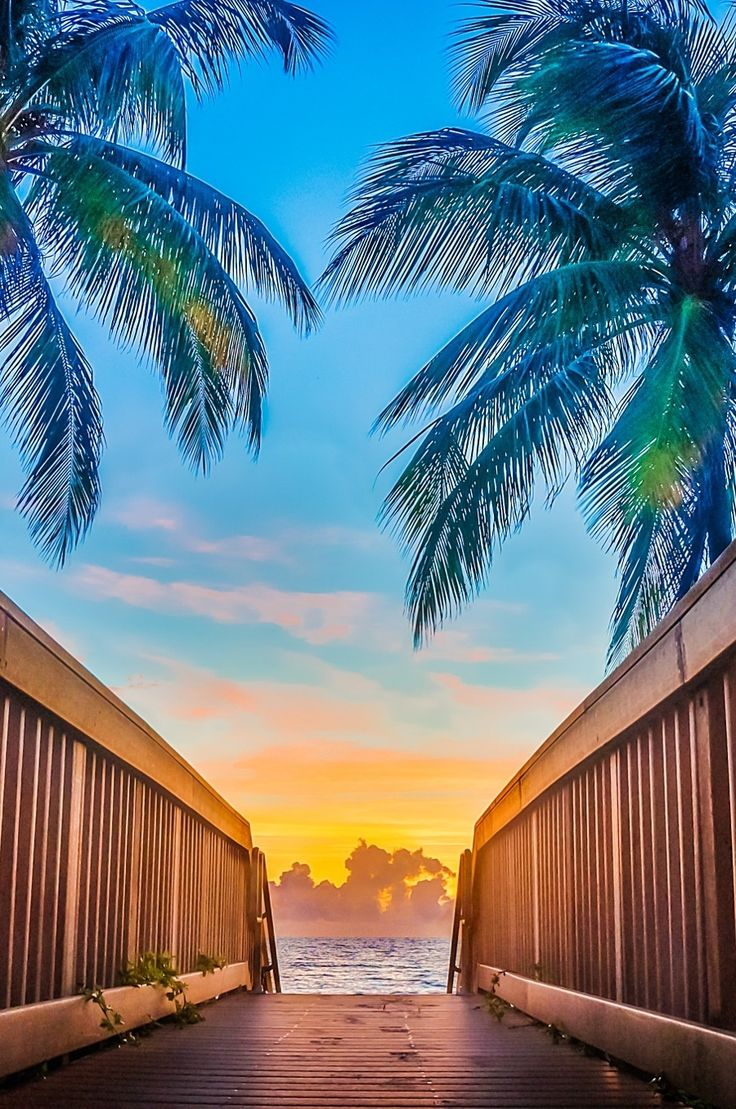 """0ce4n-g0d: """"Sunrise walkway by Jeff"""""""