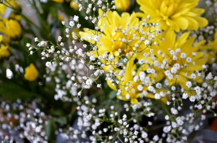 flores =)
