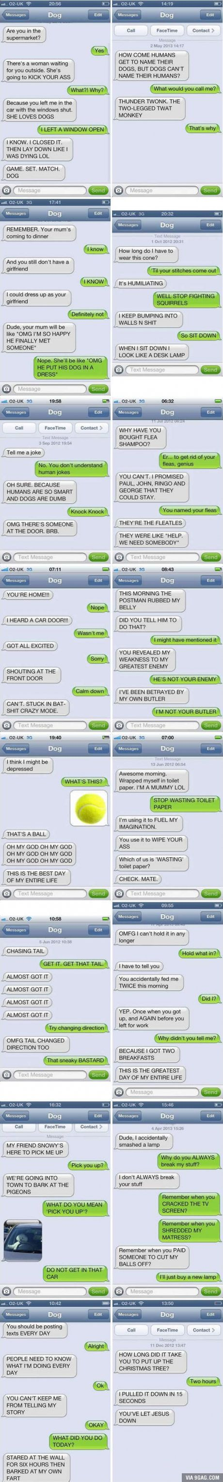 If Your Dog Knew How To Text, These Would Be Your Conversations.