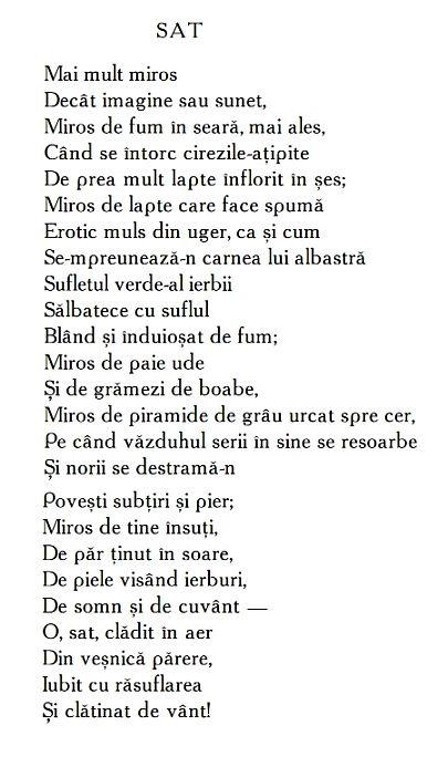 Ana Blandiana Poezii - Sat