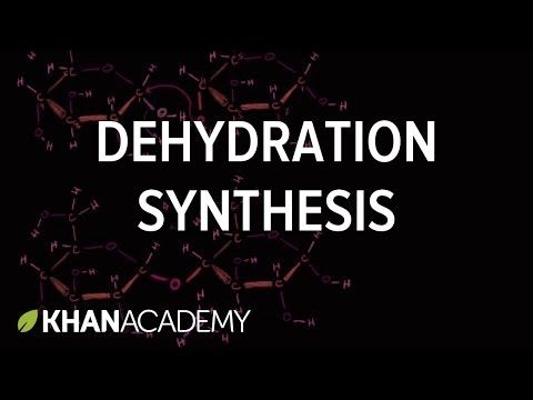 Dehydration synthesis or a condensation reaction | Carbohydrates | Macromolecules | Biology | Khan Academy